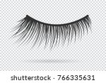 feminine lashes vector. false... | Shutterstock .eps vector #766335631