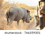 close up of two white rhino in... | Shutterstock . vector #766359301