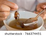 cockroach in hand take up from... | Shutterstock . vector #766374451
