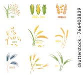 cereal plants  icons...   Shutterstock . vector #766403839