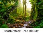asian tropical rainforest | Shutterstock . vector #766481839