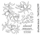 almond branches vector set on... | Shutterstock .eps vector #766526299