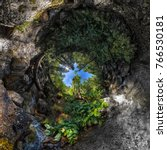 Spherical Panorama Tree Of Lif...