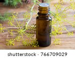 a dark bottle of dill seed oil... | Shutterstock . vector #766709029