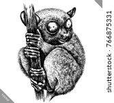 black and white engrave...   Shutterstock .eps vector #766875331