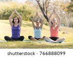 holiday woman family doing yoga ... | Shutterstock . vector #766888099