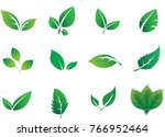 green abstract leaf icons... | Shutterstock .eps vector #766952464