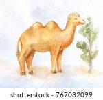 little camel eating little bush ...   Shutterstock . vector #767032099