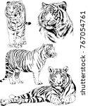vector drawings sketches... | Shutterstock .eps vector #767054761