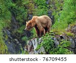 this picture is taken on kodiak ...   Shutterstock . vector #76709455