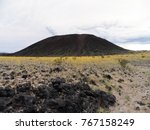 Amboy Crater with beautiful yellow wildflowers, California, Mohave Desert area
