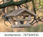 Winter Feed For Birds. Eurasia...