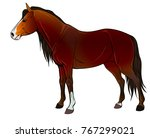 wild brown horses. vector... | Shutterstock .eps vector #767299021
