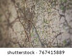 generic old map shot at an... | Shutterstock . vector #767415889
