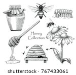 bee collection set hand drawing ... | Shutterstock .eps vector #767433061