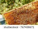 closeup portrait of beekeeper...   Shutterstock . vector #767438671