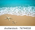 starfish on a beach sand | Shutterstock . vector #76744018
