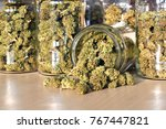 dry and trimmed cannabis buds...   Shutterstock . vector #767447821