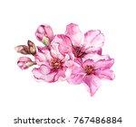 Spring Cherry Blossom  Pink...