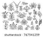 a large collection of diverse ... | Shutterstock .eps vector #767541259