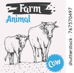 cow and a calf walk along the...   Shutterstock .eps vector #767570497