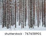 beautiful winter forest. trunks ... | Shutterstock . vector #767658901