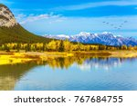concept of ecological and... | Shutterstock . vector #767684755
