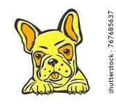 yellow dog bulldog   Shutterstock .eps vector #767685637