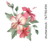 composition with hibiscus. hand ... | Shutterstock . vector #767781454