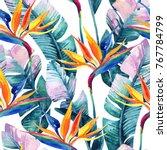 watercolor tropical seamless... | Shutterstock . vector #767784799