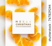 merry christmas card. fruit... | Shutterstock .eps vector #767829244
