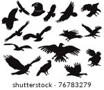 the set of eagles silhouette | Shutterstock .eps vector #76783279