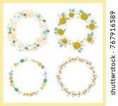 vector set of seaweed wreaths.... | Shutterstock .eps vector #767916589