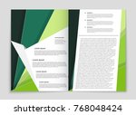abstract vector layout... | Shutterstock .eps vector #768048424