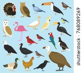 set of domestic birds and... | Shutterstock .eps vector #768089269