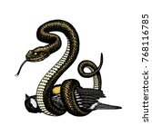 viper snake. serpent cobra and...   Shutterstock .eps vector #768116785