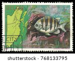 Small photo of Belize - stamp 1982, Multicolor Edition Marine Fauna, Series 1st anniversary of Independence, Sergeant Major, Abudefduf saxitilis