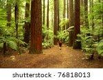 Tramper Walking Past Giant...