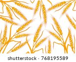 wheat background color white... | Shutterstock .eps vector #768195589