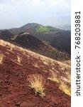 red soil dunes and fog on the... | Shutterstock . vector #768203881