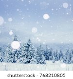 winter tree in snow. carpathian ... | Shutterstock . vector #768210805