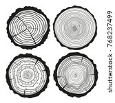 tree rings. mandala. set of... | Shutterstock .eps vector #768237499