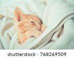 Stock photo little red kitten cat lies on the fluffy carpet at home little kitten sleeps close up of 768269509