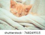 Stock photo little red kitten cat lies on the fluffy carpet at home little kitten sleeps close up of 768269515