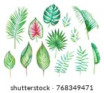 watercolor collection of the... | Shutterstock . vector #768349471