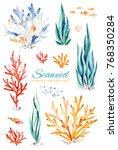 oceanic seaweed watercolor set. ... | Shutterstock . vector #768350284
