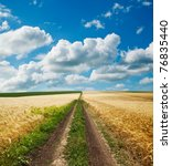 way in golden agricultural field under clouds - stock photo