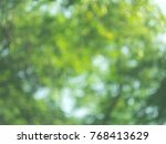 blur green leaves with bubbles... | Shutterstock . vector #768413629