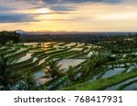 view to the jatiluwih rice... | Shutterstock . vector #768417931