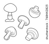 set of champignons contour | Shutterstock . vector #768442825